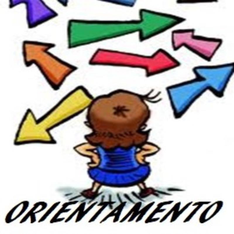 Orientamento A. S. 2018/2019: LE SCELTE DEGLI A...